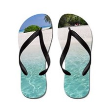 Little fishes at waters edge on tropica Flip Flops