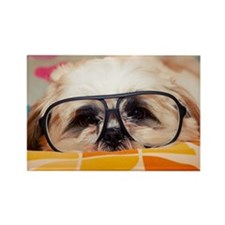 Dog with glasses Rectangle Magnet