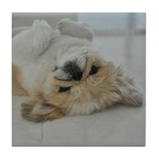 Pekingese dog Tile Coaster