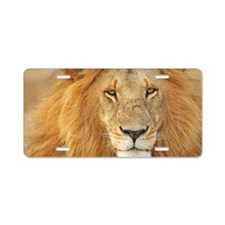 Old male-lion Aluminum License Plate