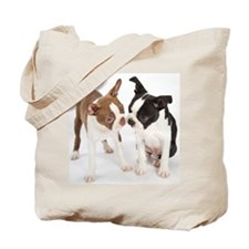 Portrait of Boston Terrier Puppies Tote Bag