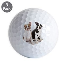 Portrait of Boston Terrier Puppies Golf Ball