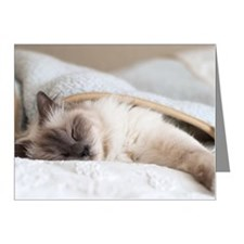 Sacred birman cat sleeping u Note Cards (Pk of 20)