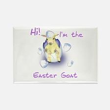 Easter Goat Baby Rectangle Magnet