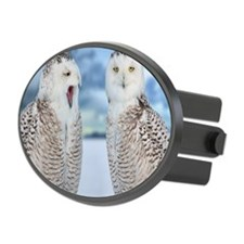 Snowy owls Hitch Cover