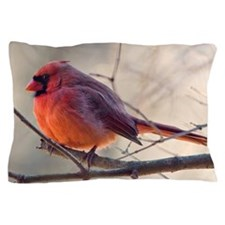 Cardinal bird on tree branch in winter Pillow Case