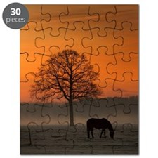 Horse in morning light Puzzle