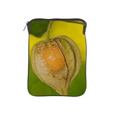 Physalis alkekengi iPad Sleeve