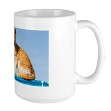 Portrait of Cat, Essaouira, Morocco Mug