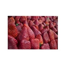Stack of strawberries at market Rectangle Magnet
