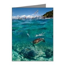 Green sea turtle and dive bo Note Cards (Pk of 20)