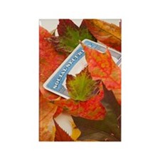 Social security card and autumn l Rectangle Magnet