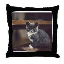 Cute grey kitten sitting on stairs Throw Pillow