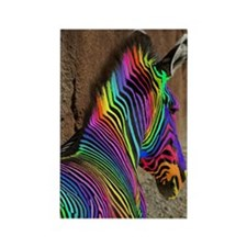 An Extremely Rare Rainbow Zebra Rectangle Magnet