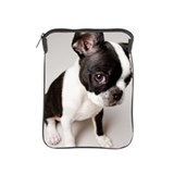 Boston terrier iPad 2 Sleeves