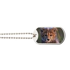 Cheetah cub Dog Tags