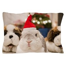 Chinese bunny rabbit Pillow Case