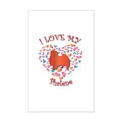 Love Phalene Posters