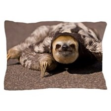 Close-up of three-toed sloth Pillow Case