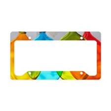 Hand Blown Artisan Glass License Plate Holder