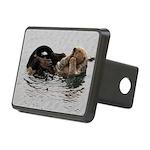 California Sea Otter Hitch Cover