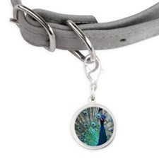 Peacock Small Round Pet Tag