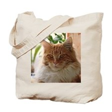 Maine coon cat well-pleased Tote Bag