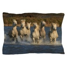 White horses of Camargue, France Pillow Case