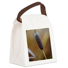 Close-up of Cattail Canvas Lunch Bag