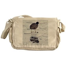 Coot standing on thin piece of ice Messenger Bag