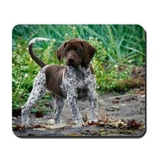 German shorthaired pointer puppy Mousepad