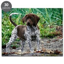 German shorthaired pointer puppy Puzzle