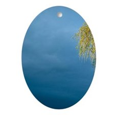 Weeping Willow Oval Ornament