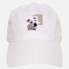 New Section Baseball Baseball Cap