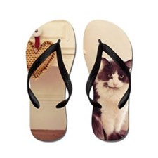 Green eyed cat in pretty house setting Flip Flops