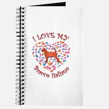 Love Bracco Journal