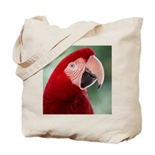 Red Macaw parrot Tote Bag