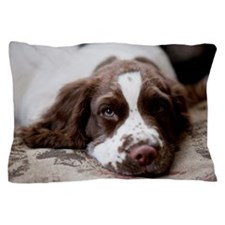 Three month old English Springer Spani Pillow Case