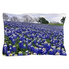 Bluebonnet fields Pillow Case