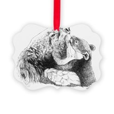 Koalas Ornament