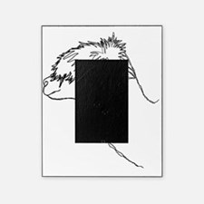 Alpaca. Picture Frame
