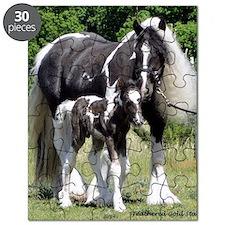Champion Gypsy mare and colt Puzzle