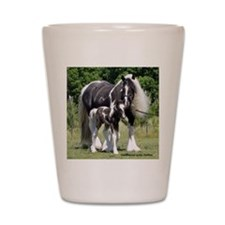 Champion Gypsy mare and colt Shot Glass