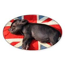 Micro pig sleeping on Union cushion Decal