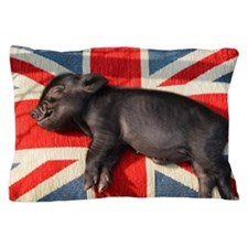 Micro pig sleeping on Union cushion Pillow Case