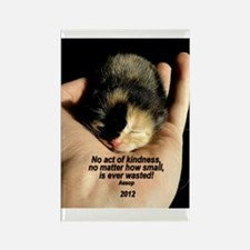 ORNAMENT (Oval) - ...Kindness Rectangle Magnet