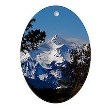 Wilson Peak Oval Ornament