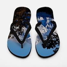Wilson Peak Flip Flops