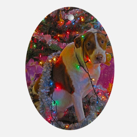 Merry Christmas Mixed Breed Oval Ornament