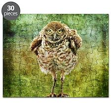Burrowing Owl Puzzle